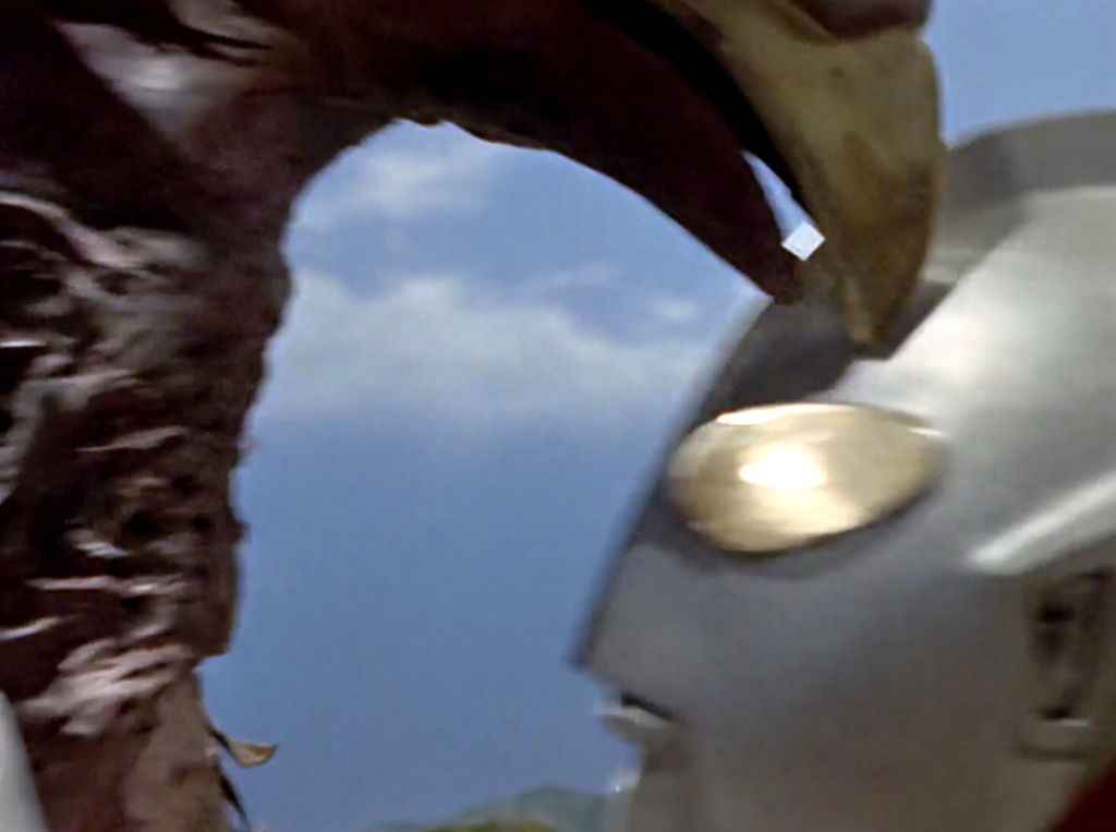 Ultraman pecked